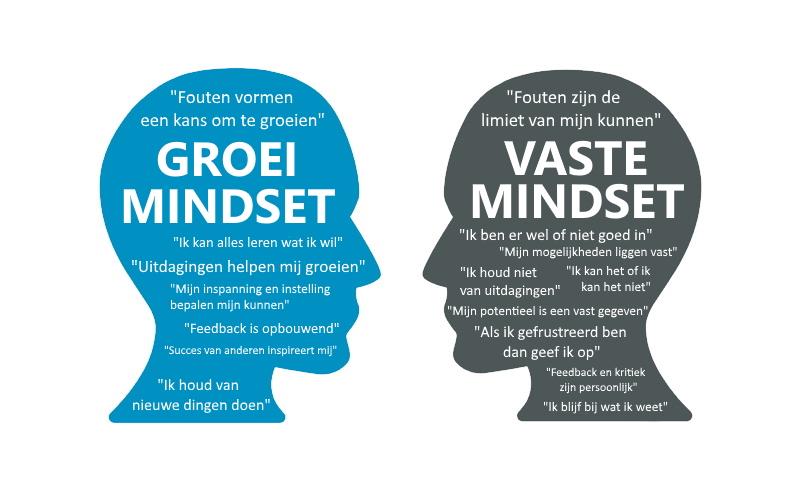 Is jouw mindset vast of groeigericht? Doe de test! - HeartState