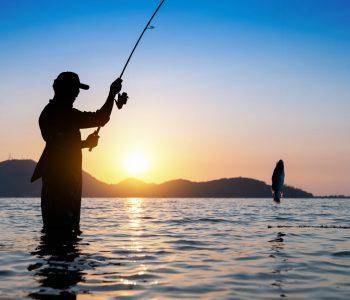 Waarom je nu moet leven. Gelukkig en tevreden zijn. Het verhaal van de visser en de zakenman.